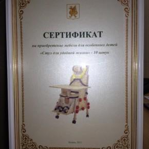 """Мэрия Казани поддержала проект """"Особенныедети.рф"""""""